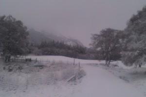New Snow 14