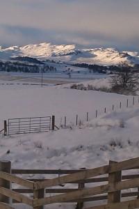 sunlit snow peaks